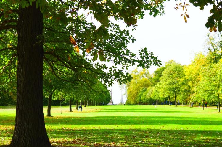Sunny hyde park london england united kingdom travel art photography walking