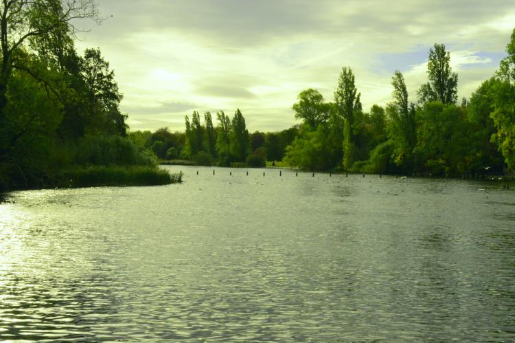 lake hyde park sunset london england united kingdom photography travel art street viaggio voyage viaje